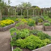 170503_Malmesbury-Gardens_010