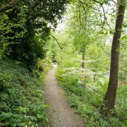 170503_Malmesbury-Gardens_013