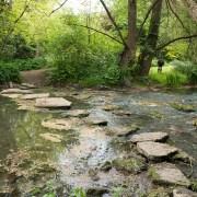 170503_Malmesbury-Gardens_022