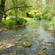 170503_Malmesbury-Gardens_028