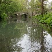 170503_Malmesbury-Gardens_030