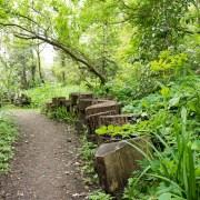 170503_Malmesbury-Gardens_031